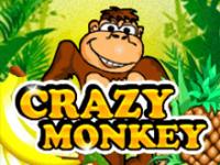 Азартная игра Crazy Monkey